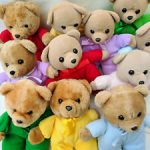 Group of Teddies for loving care
